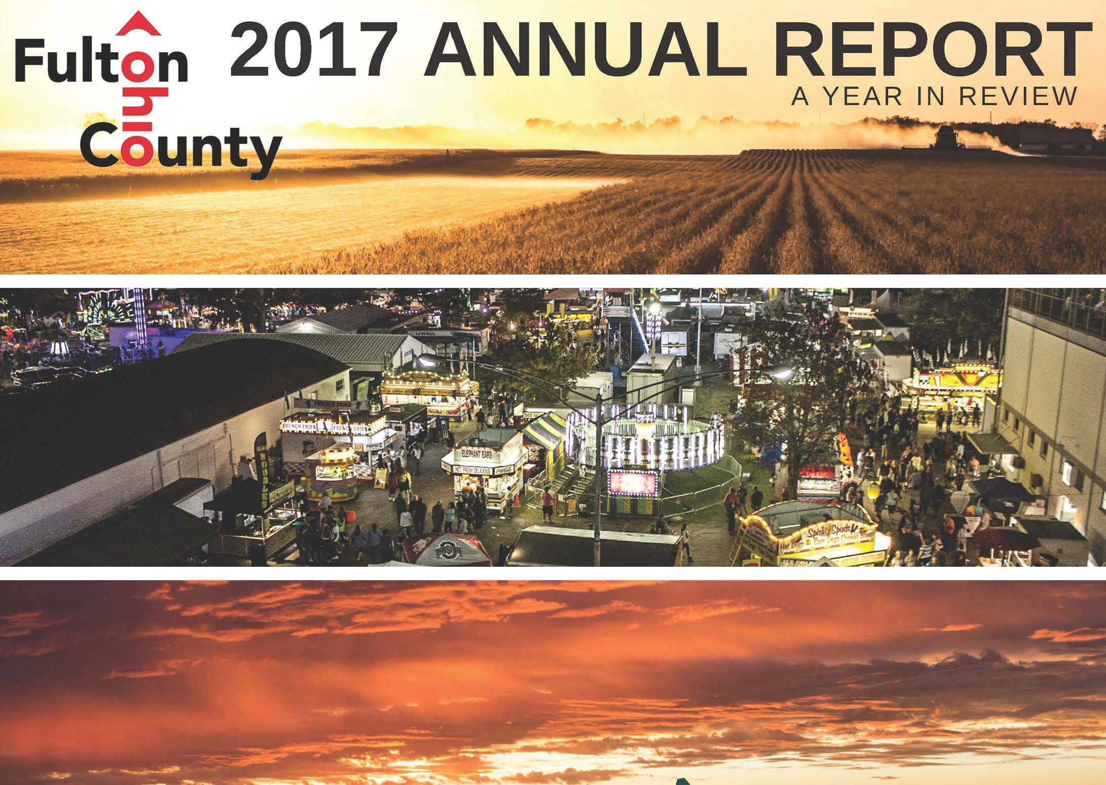 2017 Annual Report Website Image